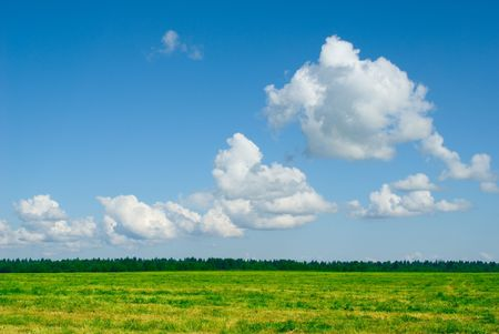 green field and blue cloudy sky background photo