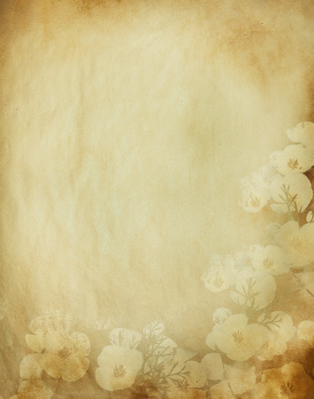 floral grunge: grunge floral background with space for text or image Stock Photo