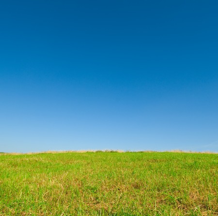 green grass and blue sky Stock Photo - 1449538