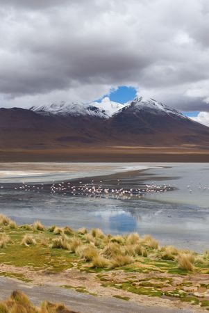 mountain, reflecting in the lake with flamingos, bolivia photo