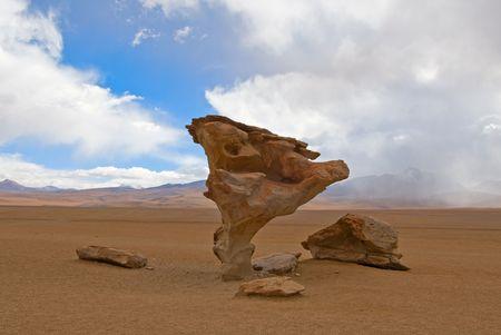 fantastical: arbol de piedra, stone tree, bolivia