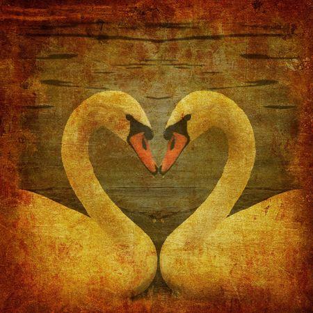swans: grunge postal con dos cisnes en el amor