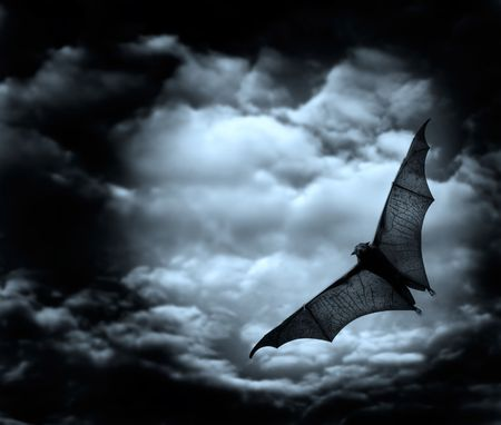 ugliness: bat flying in the dark cloudy sky