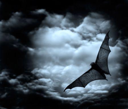 chauve souris: vol de chauve-souris dans le ciel nuageux fonc� Banque d'images