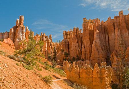 Red pinnacles (hoodoos) of Bryce Canyon, Utah, USA photo
