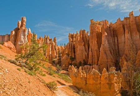 Red pinnacles (hoodoos) of Bryce Canyon, Utah, USA Stock Photo - 3271173
