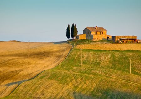 tuscan: image of typical tuscan landscape Stock Photo