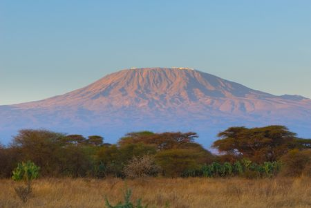 uncultivated: kilimanjaro mountain in the sunrise Stock Photo