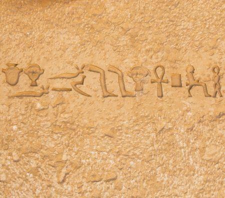 egyptian hieroglyphics from saqqarah, cairo photo