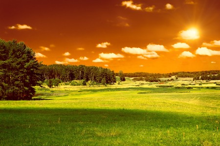 green field, forest and red sky Stock Photo - 4301924