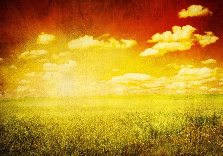 grunge image of green field and red sky Stock Photo - 4302094