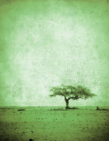 grunge image of a tree on a vintage paper photo