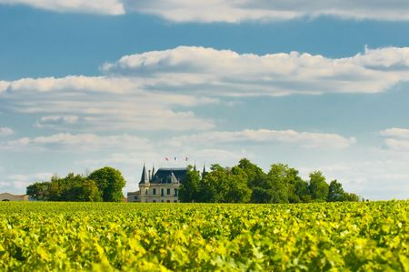 Chateau and vineyard in Margaux, Bordeaux, France photo