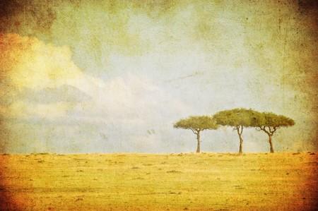 grunge image of a tree in savannah photo