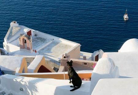 Oia village at Santorini island, Greece photo