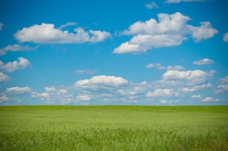 vibrant image of rural landscape Stock Photo