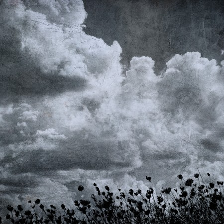 grunge image of cloudy sky and grass, perfect halloween background Stock Photo - 7970797