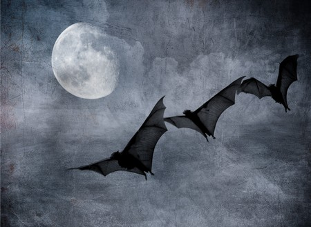 bats in the dark cloudy sky, perfect halloween background Stock Photo - 8073596