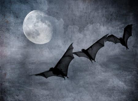 Fledermäuse in den dunklen bewölkten Himmel, perfekte Halloween hintergrund