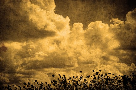 grunge image of cloudy sky and grass, perfect halloween background photo