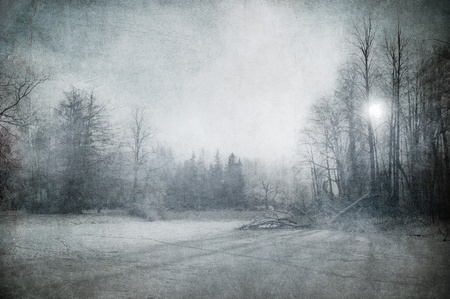 grunge image of winter landscape Stock Photo - 8295626