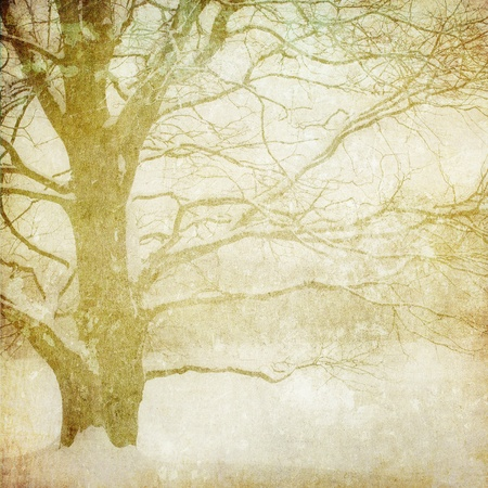 grunge image of winter landscape photo