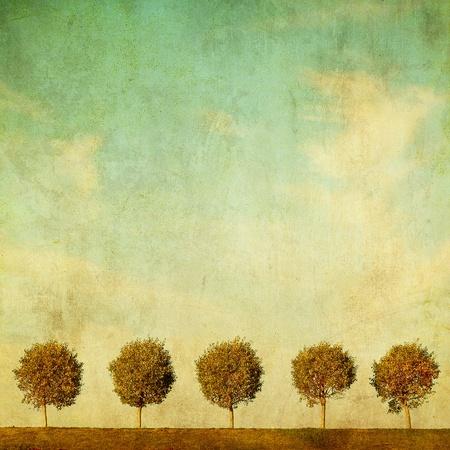 grunge image of trees photo