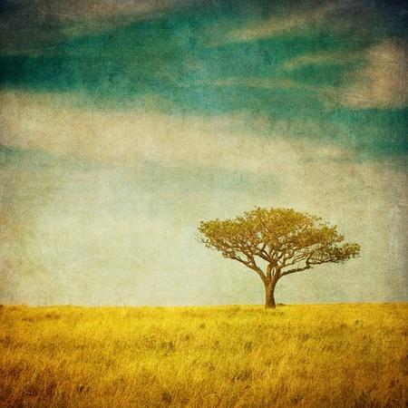 retro vintage: grunge image of a tree over vintage background