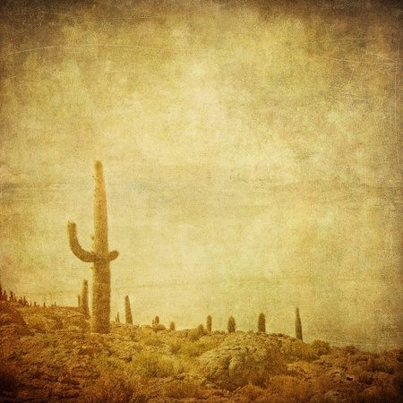 grunge background with wild west landscape photo