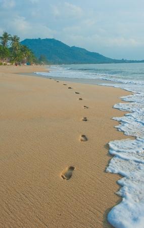huella pie: huellas en una playa tropical