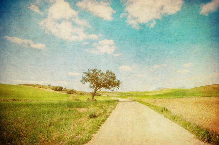country landscape: grunge image of countryside road