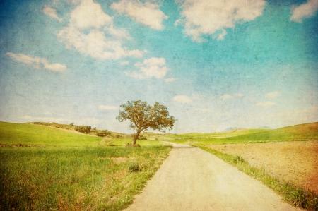 paisaje vintage: grunge imagen de la carretera rural