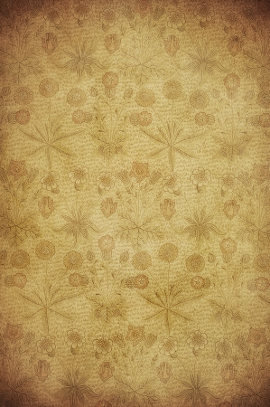 vintage wallpaper: highly detailed image of grunge vintage wallpaper Stock Photo