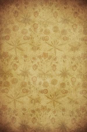 antiek behang: zeer gedetailleerd beeld van grunge vintage behang
