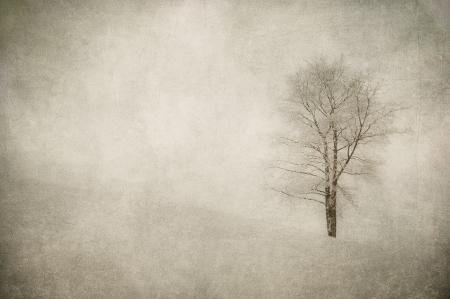 grunge Bild der Winterlandschaft