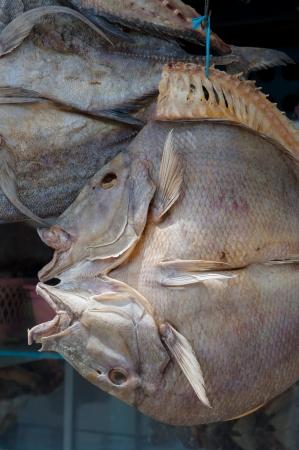 sulawesi: Dried fish, Sulawesi, Indonesia