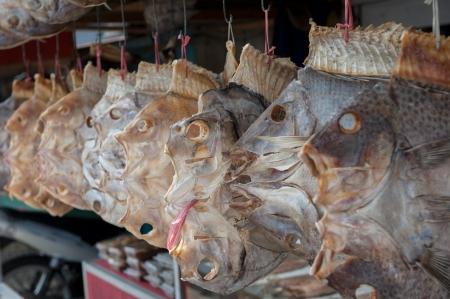 dried fish: Dried fish, Sulawesi, Indonesia