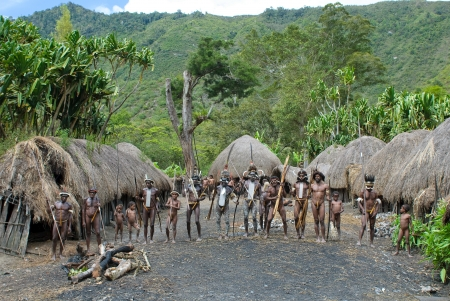 dani: WAMENA, PAPUA, INDONESIA - November, 14: Papuan people in the traditional village on November, 14, 2008 near Wamena, Papua, Indonesia. Editorial