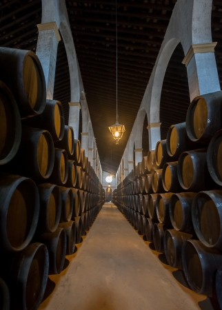 Sherry barrels in Jerez bodega, Spain photo