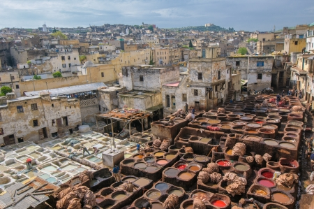 vats: Tannery in Fez, Morocco