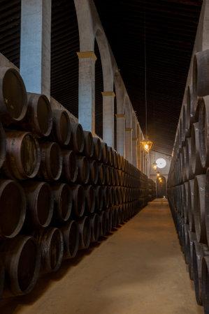 casks: Sherry barrels in Jerez bodega, Spain