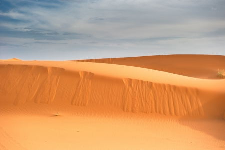 Sand dunes of Erg Chebbi, Morocco photo