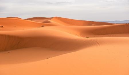 desierto del sahara: Las dunas de arena de Erg Chebbi, Marruecos