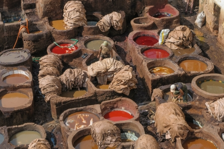 hides: Tannery in Fez, Morocco