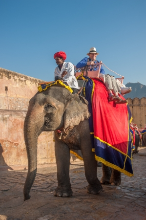JAIPUR, RAJASTAN, INDIA - January, 27: Decorated elephant at Amber Fort on December, January, 27, 2013 in Jaipur, Rajasthan, India.