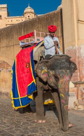 JAIPUR, RAJASTAN, INDIA - January, 27: Decorated elephant at Amber Fort on December, January, 27, 2013 in Jaipur, Rajasthan, India.