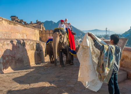 amber coloured: JAIPUR, RAJASTAN, INDIA - January, 27: Decorated elephant at Amber Fort on December, January, 27, 2013 in Jaipur, Rajasthan, India. Editorial