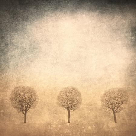 grunge image of trees over grunge background photo
