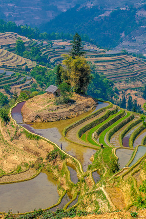 Rice terraces of Yuanyang, Yunnan, China photo