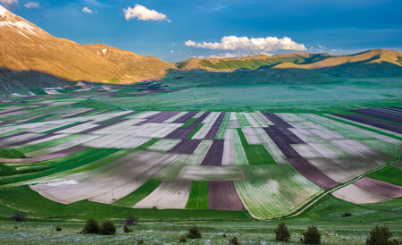 umbria: Piano Grande scenic fields and Sibillini mountains in Umbria, Italy  Stock Photo